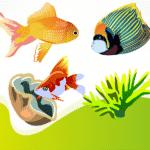 ᐅ Aquarium Fische 2020 | Aquarium | Wissenswertes + NEU